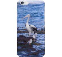 Pelican Boss iPhone Case/Skin