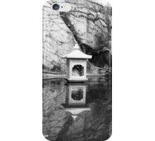 Tranquil Solitude iPhone Case/Skin