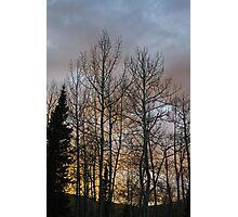 Evening Photographic Print