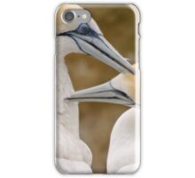 Gannet Pair 1 iPhone Case/Skin