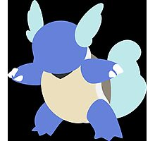 Kanto Starters - Wartortle Photographic Print