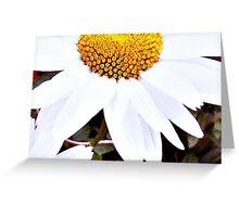 Large Daisy Greeting Card