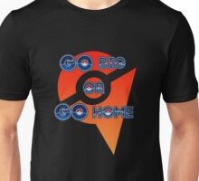 Go Big or Go Home - Team Valor Unisex T-Shirt