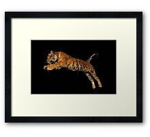 Polygon Tiger Jumping  Framed Print