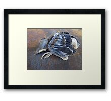 One bird escape from the Zoo of Death Framed Print