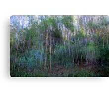 Forest for the Trees for the Forest Canvas Print