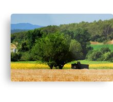 CAMP AND TREE Metal Print