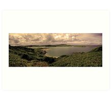 Ards Forest Park, County Donegal, Ireland Art Print