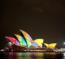 Rainbow sails by Andrew Felton