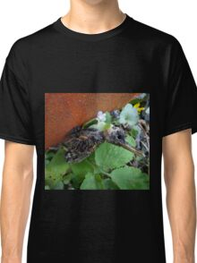 Another bird escape from the Zoo of Death Classic T-Shirt