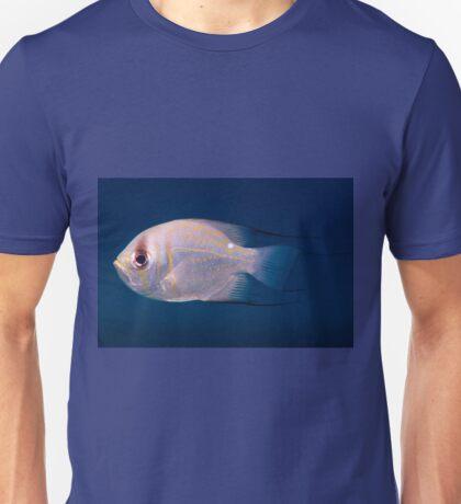 Threadfin Pearl Perch, Ningaloo Reef Unisex T-Shirt
