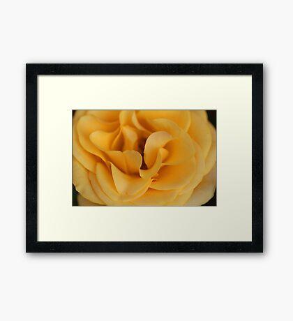 Yellow Waves Framed Print