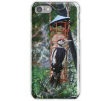Great Spotted Woodpecker iPhone Case/Skin