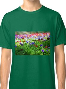 A field of cultivated colourful and vivid Anemone flowers. Photographed in Israel Classic T-Shirt