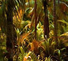 Jungled by rcurtiss000