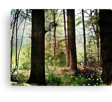 Norfolk Treescape .. Canvas Print