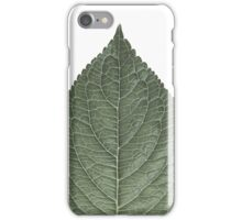 Leaf in B&W iPhone Case/Skin