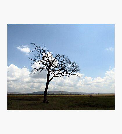 Kenyan Landscape Photographic Print