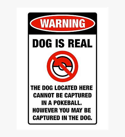 Pokemon Go Warning sign The dog located here cannot be captured in a pokeball Photographic Print