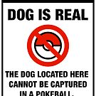 Pokemon Go Warning sign The dog located here cannot be captured in a pokeball by squidgun