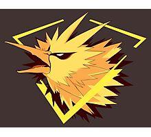 Instinct Mascot Photographic Print