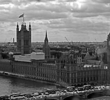 Palace of Westminster by Astrid Ewing Photography