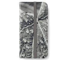 Vintage photography, Fig leaf with Rain drops. Retro wet plate photograph. Black & White. iPhone Wallet/Case/Skin