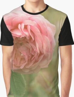 Close up photo of a pink rose Graphic T-Shirt