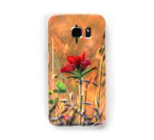 Indian Paint Brush at Sunset Samsung Galaxy Case/Skin