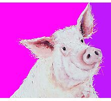 Pig painting on purple and pink Photographic Print
