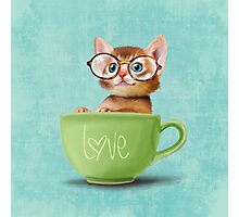 Kitten in a big cup Photographic Print