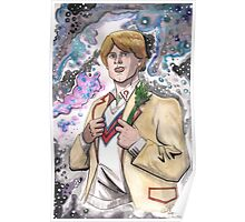 Doctor Who The 5th Doctor Poster