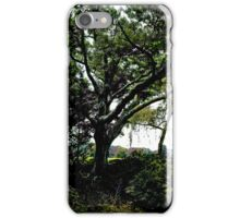 Stanely Park's Tree iPhone Case/Skin