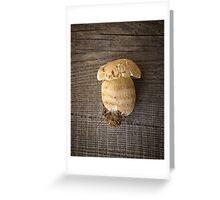 Mushroom Boletus over Wooden Background Greeting Card