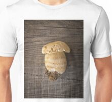 Mushroom Boletus over Wooden Background Unisex T-Shirt