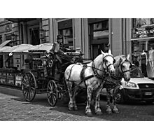 Horse Drawn Carriage Photographic Print