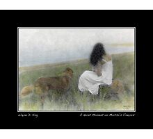 Quiet Moment on the Vineyard Photographic Print