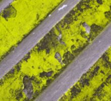 Step Green - 2766 Sticker