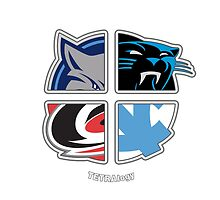 Carolina Sports TETRAlogy! Carolina Panthers, Charlotte Bobcats (Hornets), Carolina Hurricanes and University of North Carolina Tar Heels by Sochi
