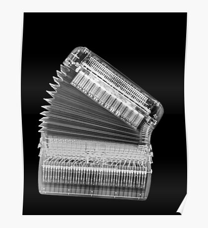 X-ray of an Accordion on black background  Poster