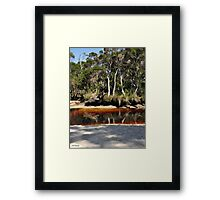Peacefully Reflecting Framed Print
