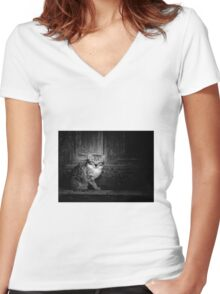 CUTE CAT Women's Fitted V-Neck T-Shirt