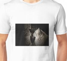 CUTE CAT REFLECTION IN THE GLASS Unisex T-Shirt