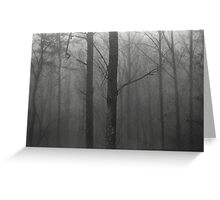 Trees In The Fog Greeting Card