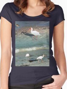 White Ibises with Pink Beaks Women's Fitted Scoop T-Shirt