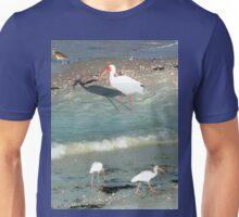 White Ibises with Pink Beaks Unisex T-Shirt