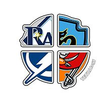 Tampa Bay Pro Sports TETRAlogy! Tampa Bay Buccaneers, Rays, Mutiny and Lightning by Sochi