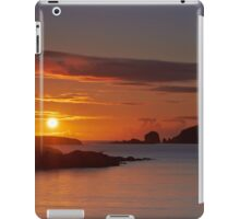 Hebridean Gold iPad Case/Skin