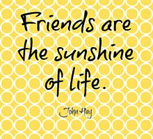 Friends Are The Sunshine Of Life by mezzilicious