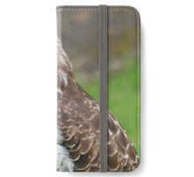 Buzzard iPhone Wallet/Case/Skin